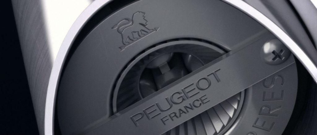 Logo Peugeot Saveurs