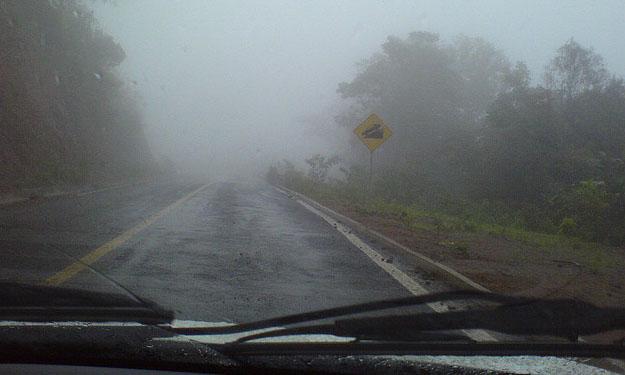 Niebla en una carretera vista desde un coche